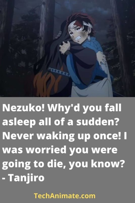 Nezuko! Why'd you fall asleep all of a sudden_ Never waking up once! I was worried you were going to die, you know_ - Tanjiro-min